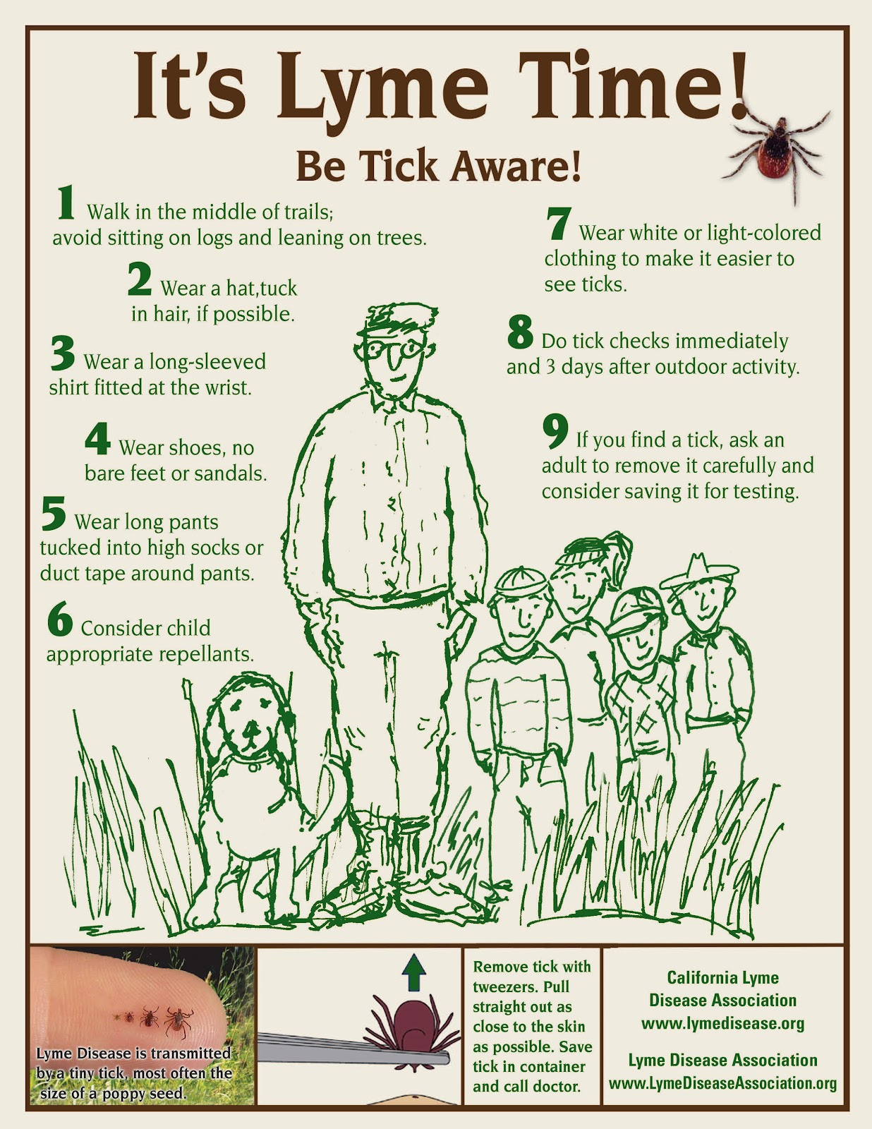 Lyme Disease Facts For Kids